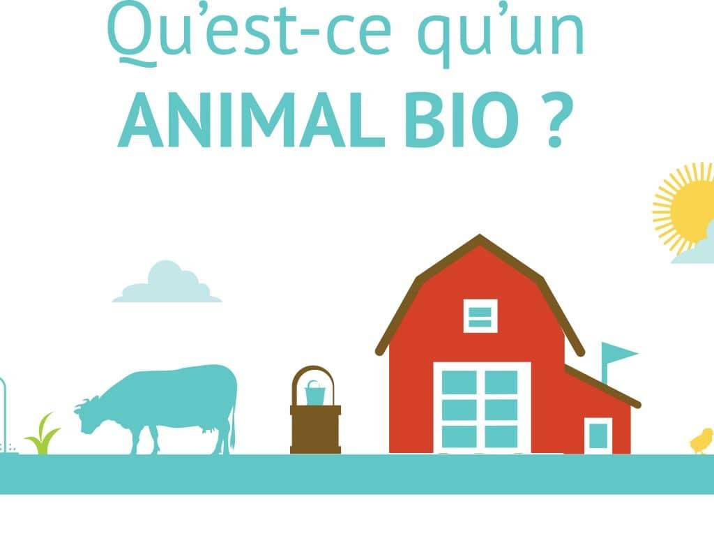 """Panneau: """"Qu'est ce qu'un animal bio"""""""