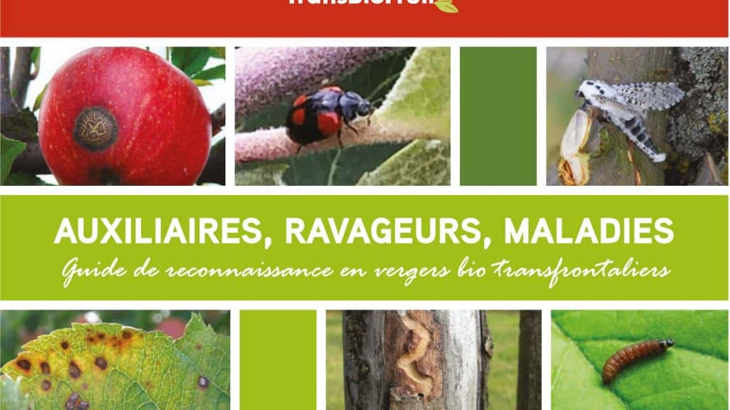 Auxiliaires, ravageurs, maladies : Guide de reconnaissance en vergers bio transfrontaliers