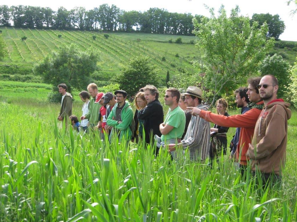 Formation diplômante en agriculture biodynamique