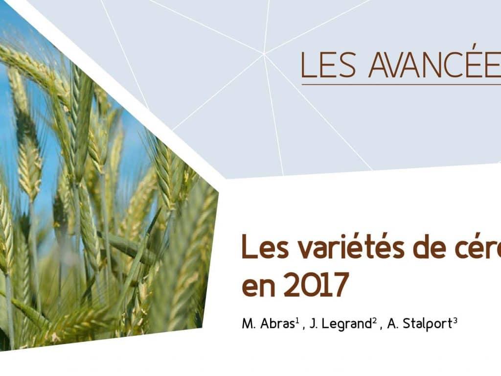 Les variétés de céréales bio en 2017