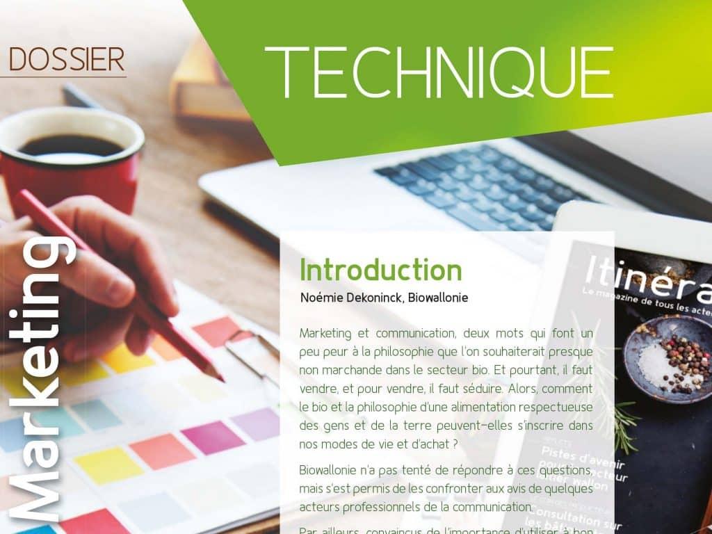 Communication & marketing pour le secteur durable