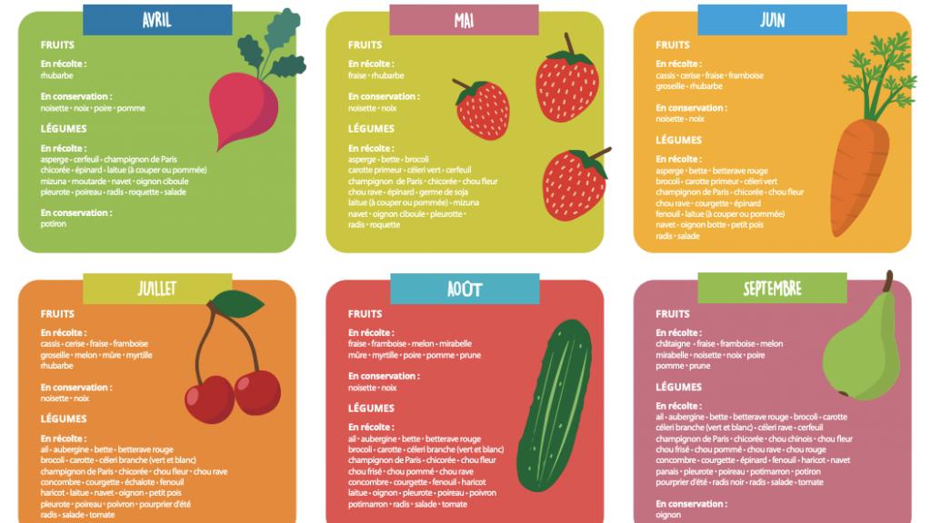 Guide des espèces – Poisson durable