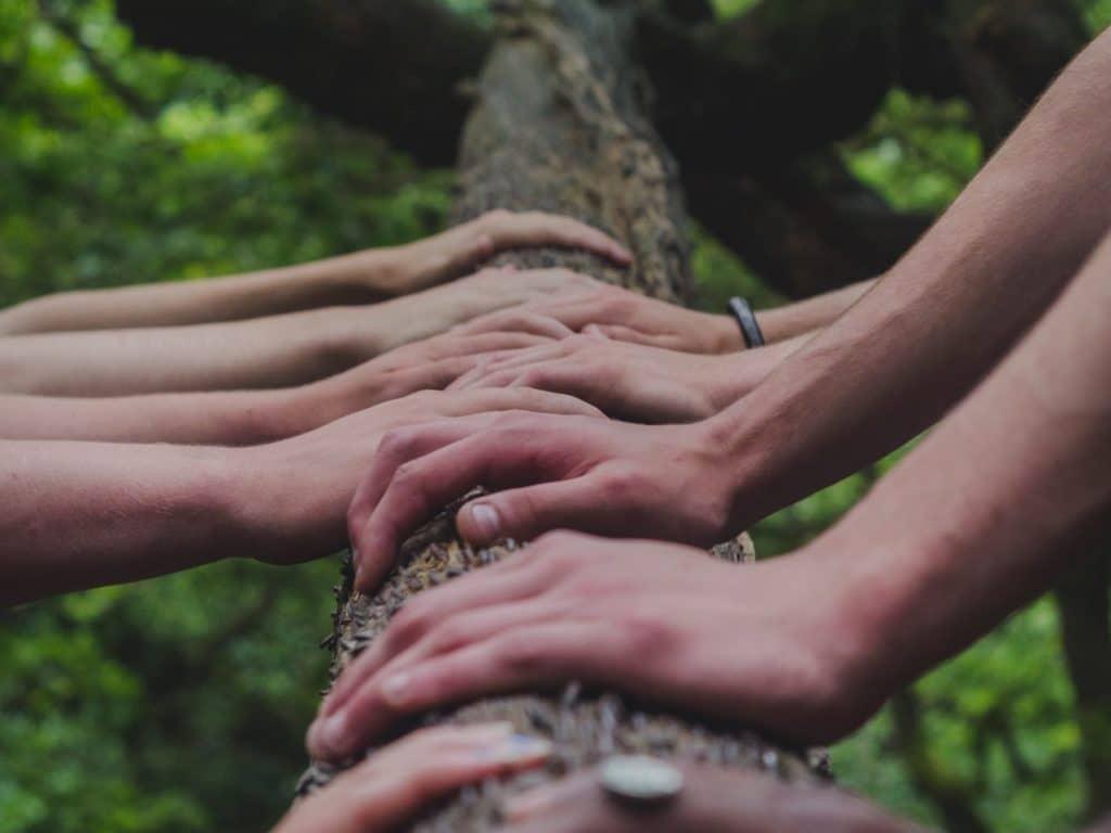 Journée de Réseautage – De nouveaux débouchés pour vos productions bio wallonnes